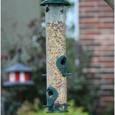 Tube Bird Feeder AshmanOnline