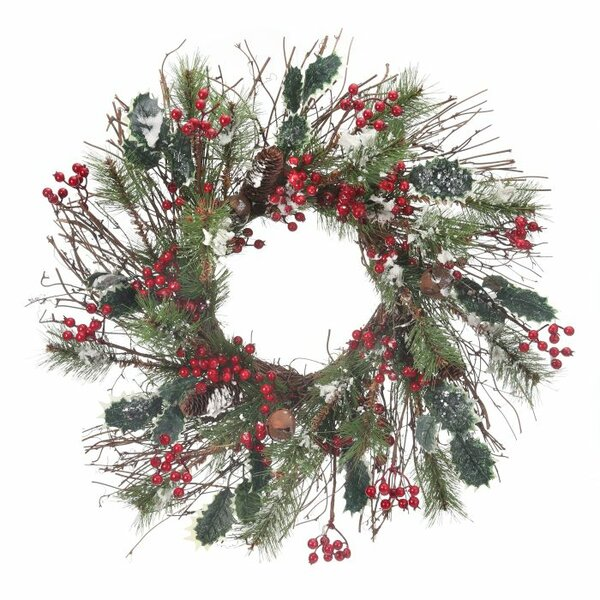 Frosted 24 Skip Pine Wreath by The Holiday Aisle