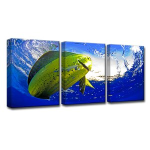'Mahi' by Chris Doherty 3 Piece Photographic Print on Canvas Set by Ready2hangart