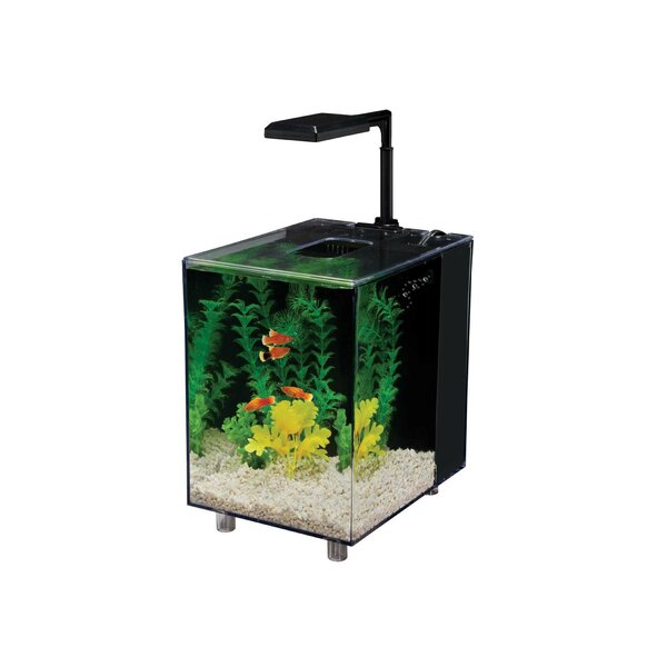 Prism 2 Gallon Desktop Aquarium Tank by Penn Plax