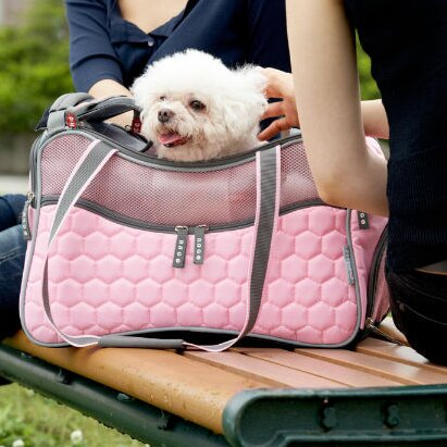 Jenkin Argo Petagon Airline Approved Pet Carrier by Tucker Murphy Pet