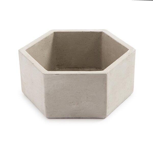 Blanchette Hexagon Cement Pot Planter by Wrought Studio