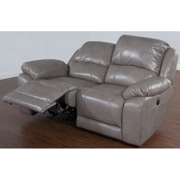 Floraville Dual Reclining Loveseat by Red Barrel Studio