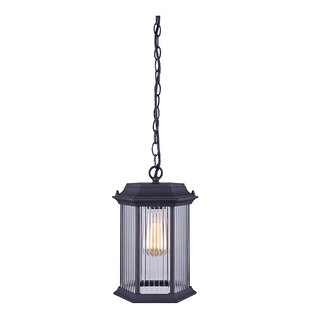 Shop For Rickards 1-Light Outdoor Hanging Lantern By Charlton Home