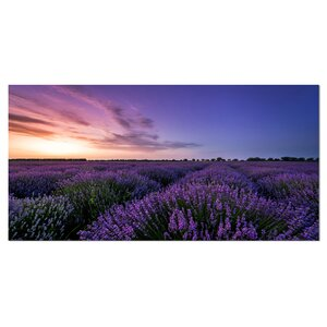 'Beautiful Lavender Flowers at Sunset' Photographic Print on Wrapped Canvas by Design Art