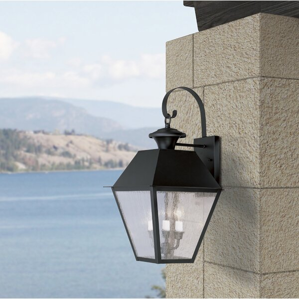 Cynda 3-Light Outdoor Wall Lantern by Darby Home Co