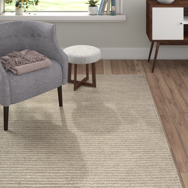 Daniella Hand-Woven Gray Area Rug by Langley Street
