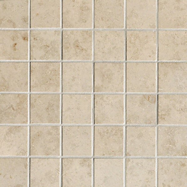 Everstone 2 x 2 Porcelain Mosaic Tile in Ever-Beige by Travis Tile Sales