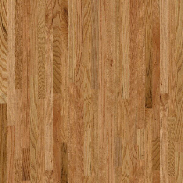 Sawgrass 2-1/4 Solid Red Oak Hardwood Flooring in Seymour by Shaw Floors