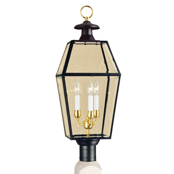 Alam Outdoor 3-Light Lantern Head by Darby Home Co