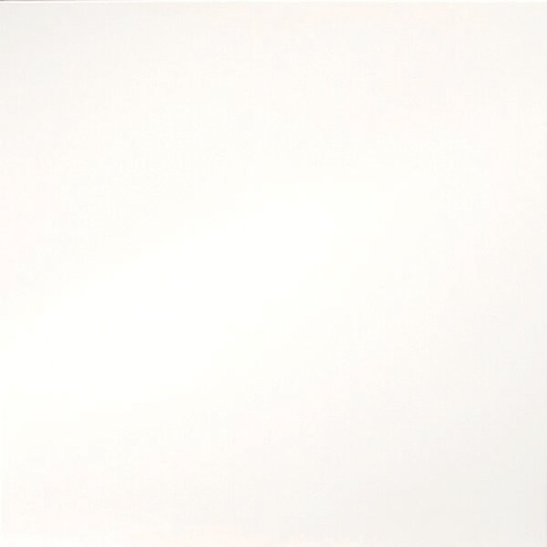 Times Square 24 x 24 Porcelain Field Tile in Polished White by Emser Tile