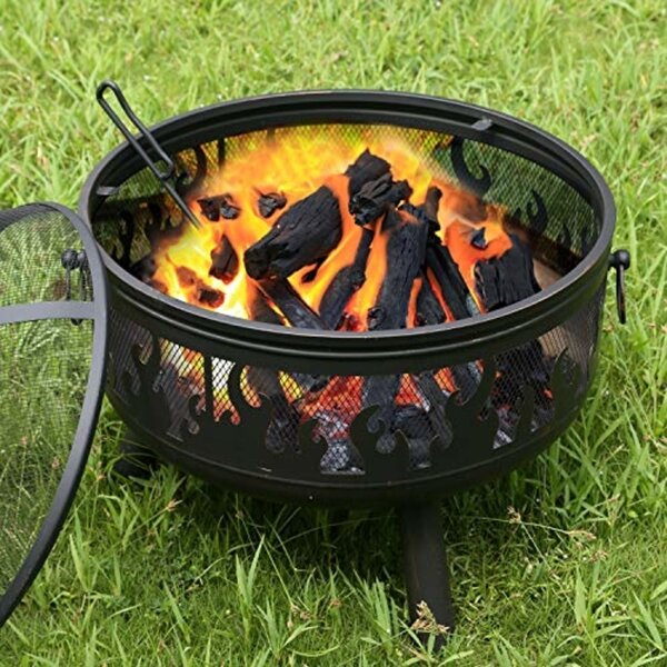 Oasis Steel Wood Burning Fire Pit By Ebern Designs