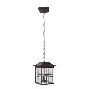 Sanderson 3-Light Outdoor Hanging Lantern By Darby Home Co Outdoor Lighting