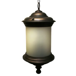 Bargain Phillipstown 4-Light Outdoor Pendant By Alcott Hill