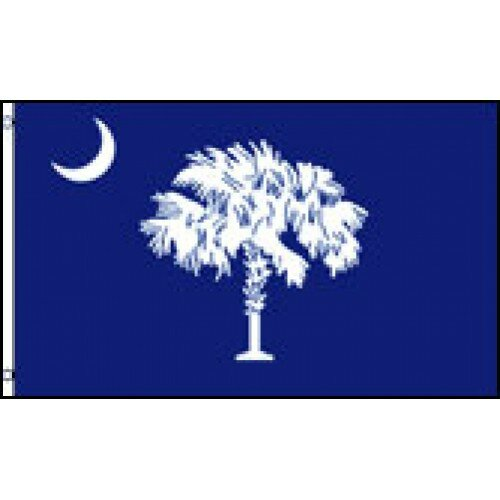 South Carolina State Traditional Flag by NeoPlex