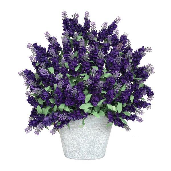Purple Lavender Floral Arrangement in White Pot by Ophelia & Co.
