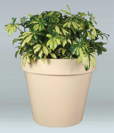 Vista Plastic Pot Planter by Allied Molded Products