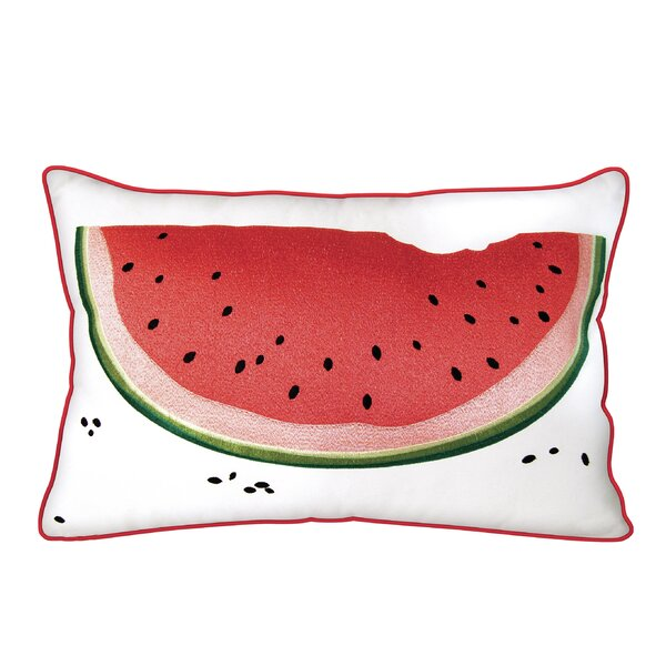 Vandalia Slice Outdoor Pillow by Brayden Studio