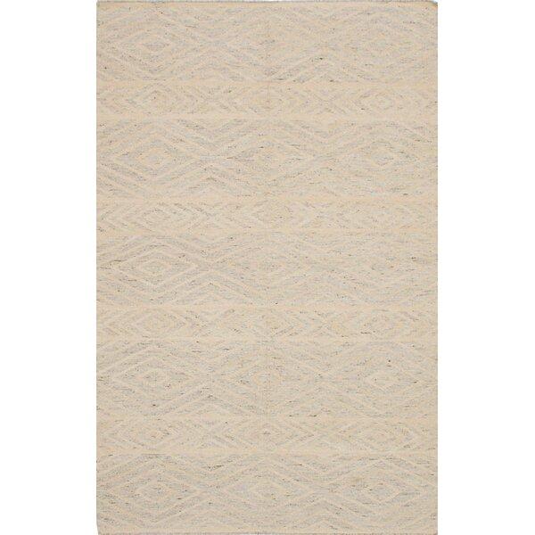 Tribeca Hand-Woven Gray/Beige Area Rug by ECARPETGALLERY
