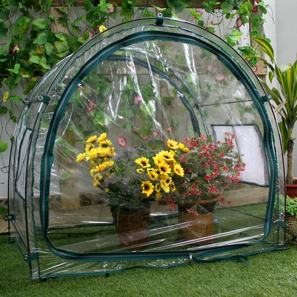3.5 Ft. W x 2 Ft. D Mini Greenhouse by Zenport