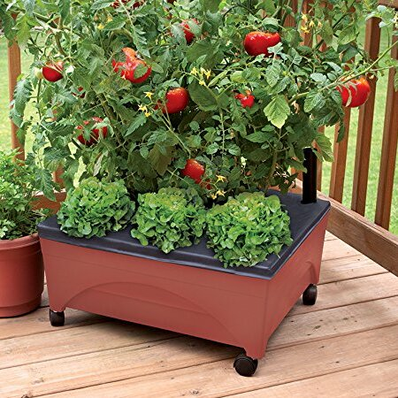 City Picker Self Watering Planter Box by EMSCO Group