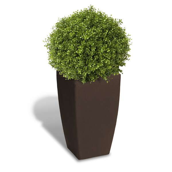 Plastic Pot Planter by Algreen