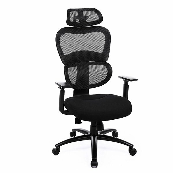 Etter Ergonomic Mesh Office Chair by Rebrilliant