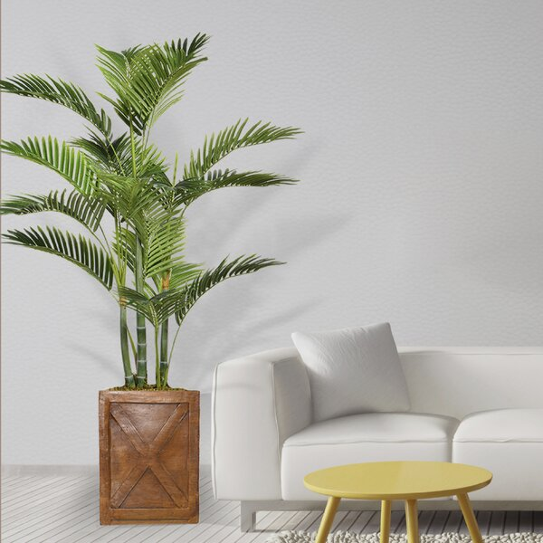 Floor Palm Tree in Planter by Bay Isle Home