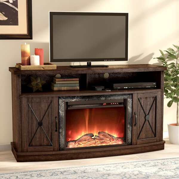 Schuyler 54 TV Stand with Fireplace by Darby Home