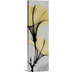 Hibiscus by Albert Koetsier Photographic Print on Canvas by Great Big Canvas