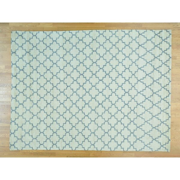 One-of-a-Kind Beard Plush Handwoven Ivory Wool Area Rug by Isabelline