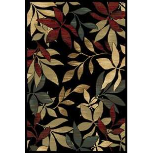 Compare prices Clarkson Black Area Rug By Threadbind
