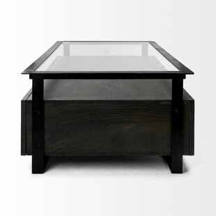 Macdonald Coffee Table with Tray Top and Storage