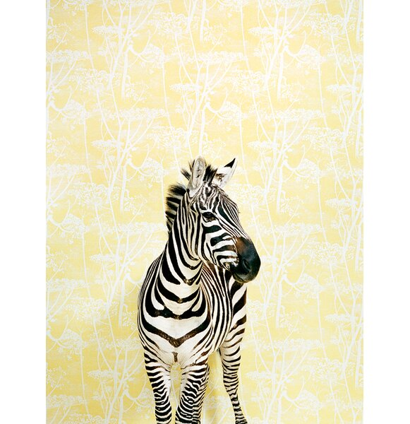 Zebra on Yellow by Catherine Ledner Photographic Print on Canvas by GreenBox Art