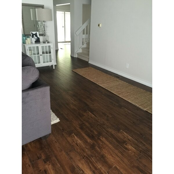 Heartland 5 x 48 x 12mm Maple Laminate Flooring in Bronco by Bellami