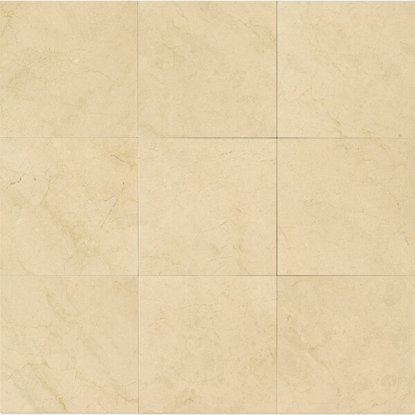 18 x 18 Marble Field Tile in Polished Crema Marfil Select