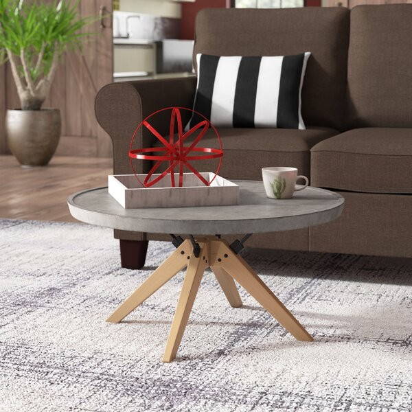 Ashleigh Coffee Table By Trent Austin Design®