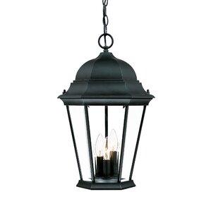 Gregoire 3 Light Outdoor Hanging Lantern