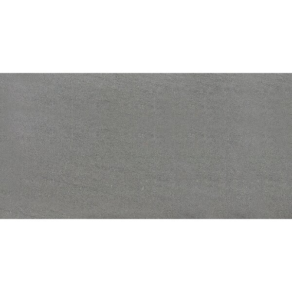 Nouveau 12 x 24 Porcelain Field Tile in Cameleon by Parvatile