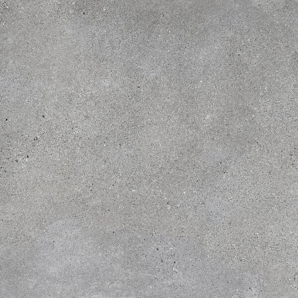 Alpha 12 x 24 Ceramic Field Tile in Gray by Emser Tile