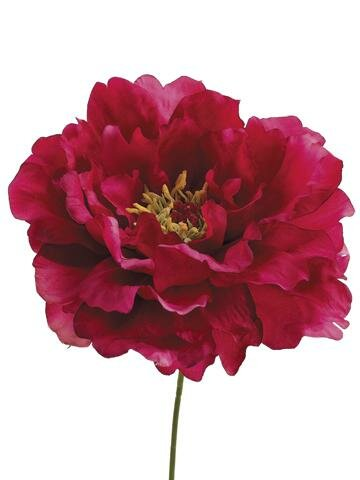 Peony Pick Hot Stem (Set of 2) by Andover Mills