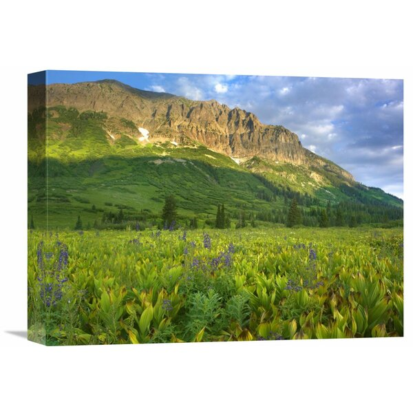 Nature Photographs Gothic Mountain Overlooking Meadow near Crested Butte Colorado by Tim Fitzharris Photographic Print on Wrapped Canvas by Global Gallery