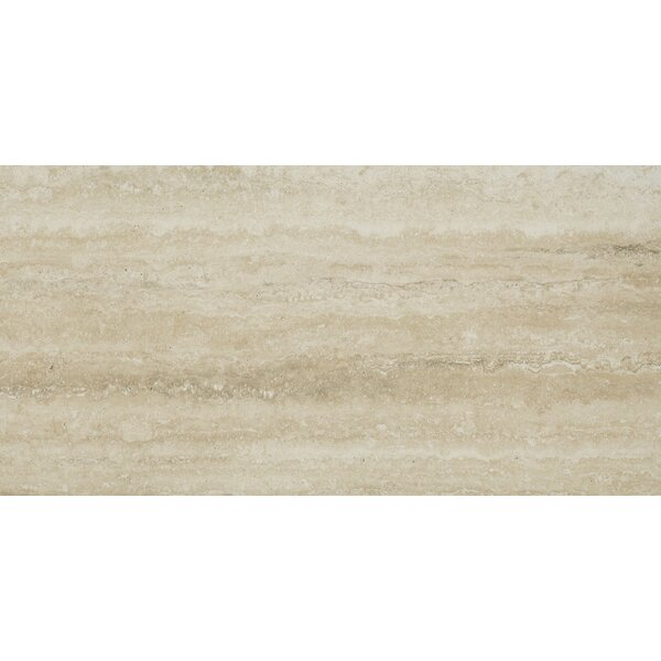 Veneto 12 x 24 Porcelain Field Tile in Sand by MSI
