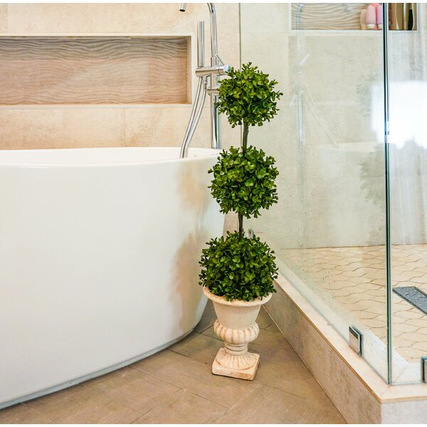 Tri-Ball Eucalytus Floor Boxwood Topiary in Pot by Charlton Home