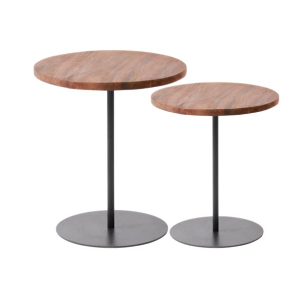 Quinones 2 Piece Nesting Tables By Williston Forge