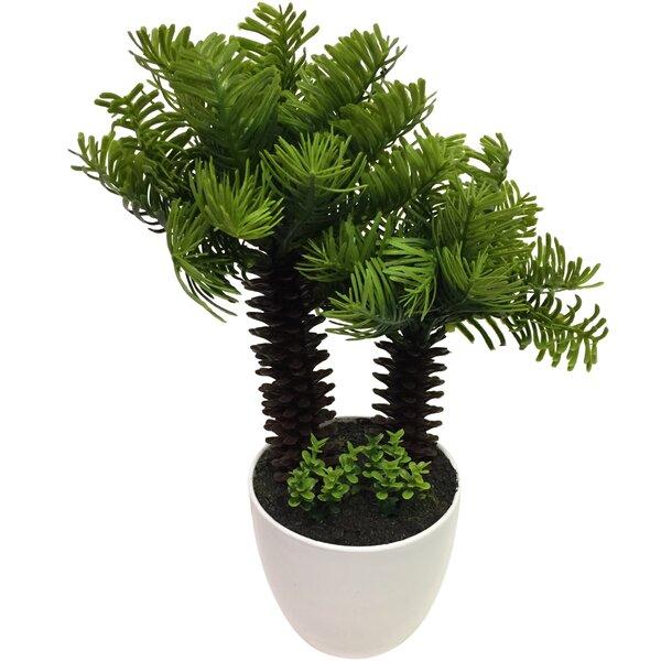 Bonsai Palm Tree by Wrought Studio