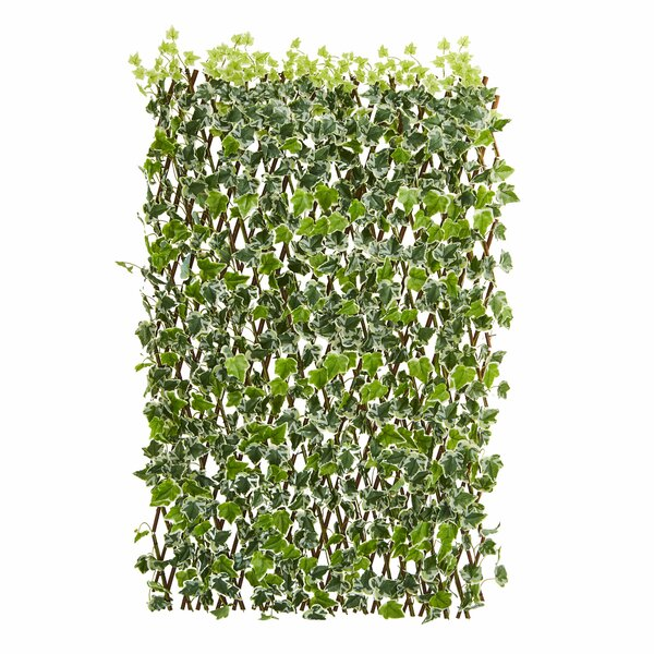 3.5 ft. H x 5 ft. W English Ivy Expandable Fence Panel by Nearly Natural