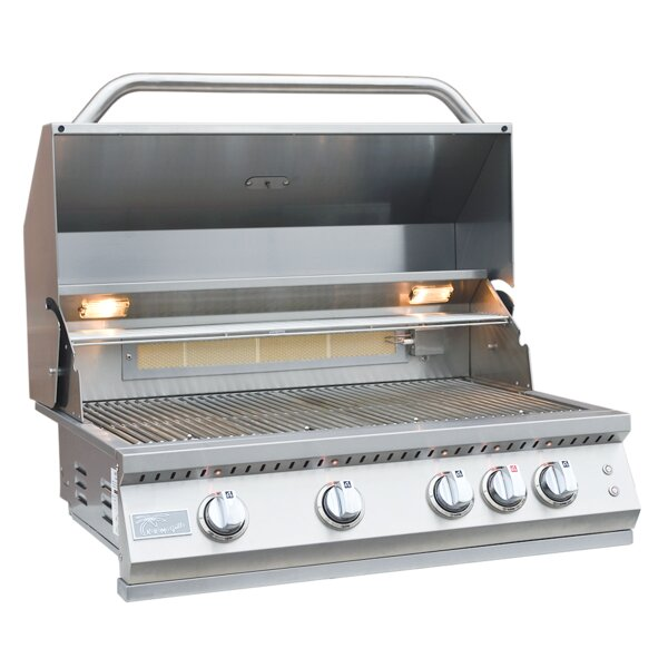 Professional BBQ 4-Burner Built-In Convertible Gas