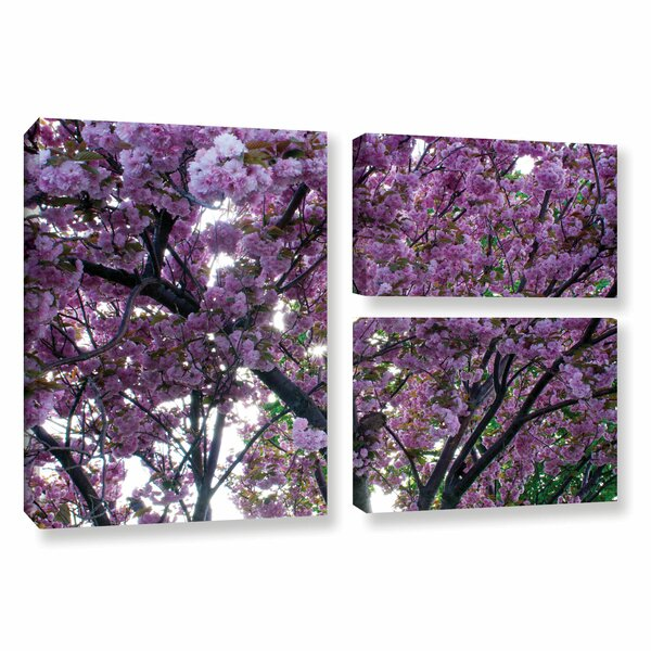 Spring Flowers by Dan Wilson 3 Piece Photographic Print on Wrapped Canvas Set by ArtWall