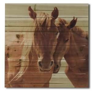 'Horses Snuggling' Photographic Print on Wood by Gallery 57